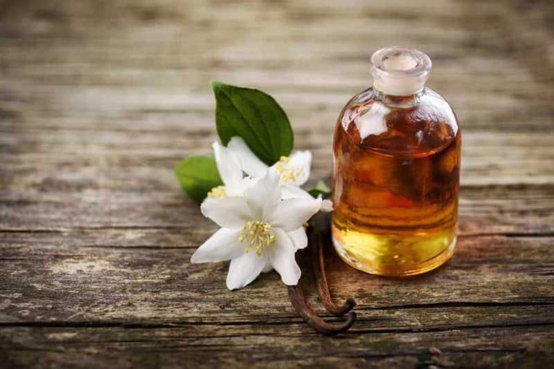 Image result for Manfaat Minyak Bunga Melati Untuk Kesehatan Tubuh