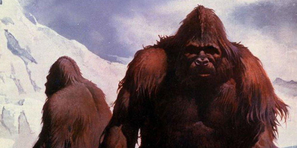 Mitos Manusia Salju Yeti Terkuak, Hasilnya Mengejutkan!