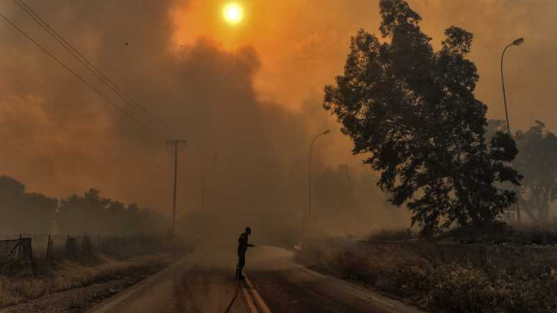 Gelombang Panas Membakar Negara-negara di Eropa