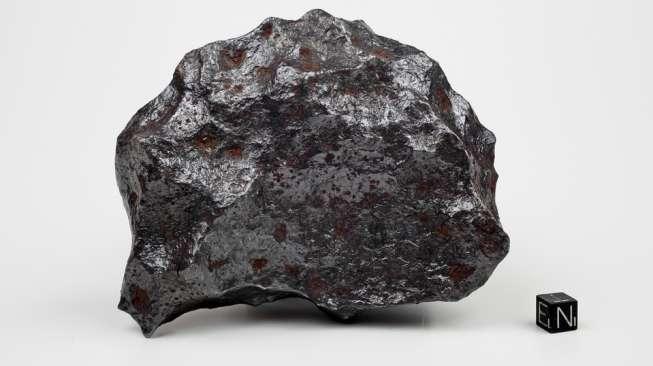 Meteor asal Bulan Laku Terjual Rp 9,3 Miliar