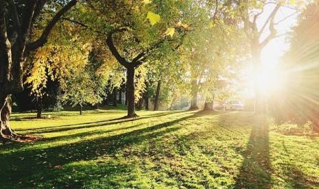 Manfaat Terkena Sinar Matahari