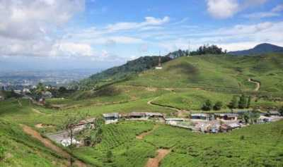 Polisi Keluhkan Acara Tea Walk Pemprov DKI Jakarta