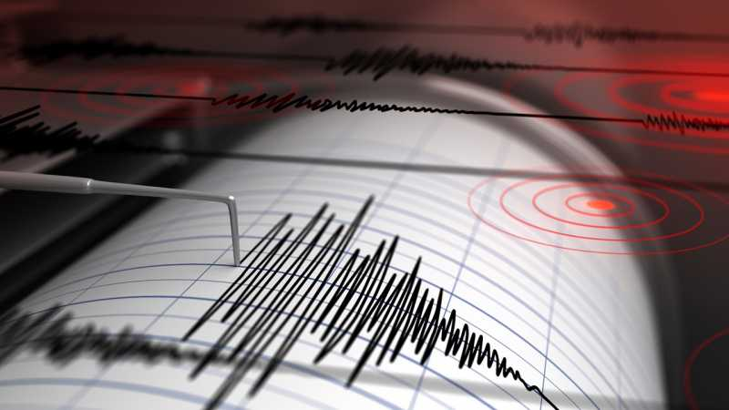Gempa 5,5 Magnitudo Guncang Jayapura