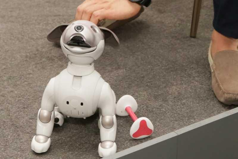 Robot Aibo Diprediksi Menjadi Gadget Paling Lucu di 2018