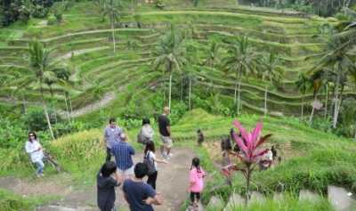 Pendiri Telegram Promosikan Bali via Instagram