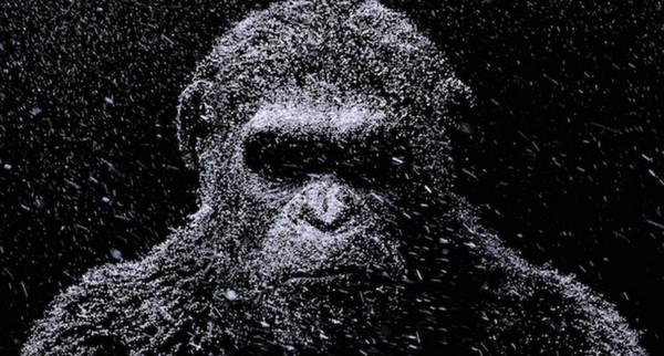 Seperti Planet of The Apes, Ilmuwan Ciptakan Monyet Super Cerdas