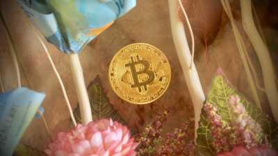 Anti-Mainstream, Pasangan Ini Menikah Dengan Mahar Bitcoin